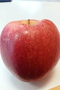 Antioxidantien kommen unter anderem in Äpfel vor