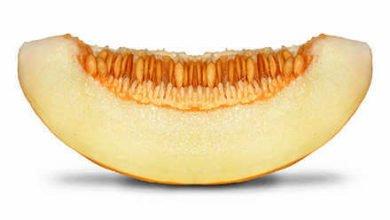 Photo of Die Melone – Ein interessanter Weg Vitamine zu sich zu nehmen