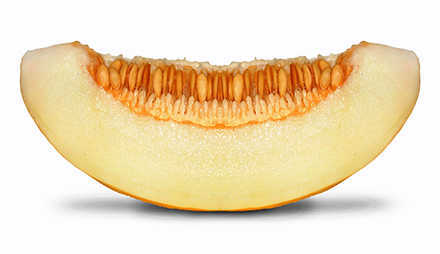 Die Melone – Ein interessanter Weg Vitamine zu sich zu nehmen