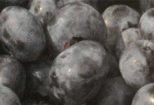 Die Acai Beere hat viele Antioxidantien