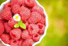 Photo of 9 gesunde Lebensmittel für einen schlanken Körper