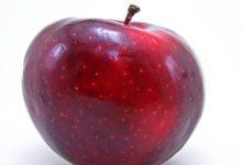 Apfel Kalorien und Nährwerte des beliebten Obstes
