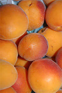 Aprikosen sind gesund, aber voller Kalorien