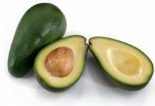 Photo of Avocado Kalorien und Nährwerte des Superfoods in der Küche