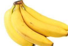 Die Banane enthält viele Kalorien und Nährstoffe