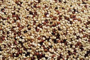 Quinoa Reis ist auch für Veganer äußerst interessant