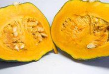 Photo of Kürbis Kalorien und Nährwerte des orangen Allrounders