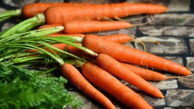 Photo of Karotten Kalorien und Nährwerte, Kohlenhydrate und Vitamine