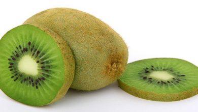 Photo of Kiwi Kalorien und Nährwerte der Powerfrucht mit viel Vitamin C