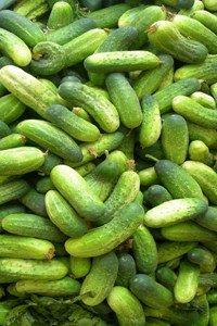 Kalorien und Nährwerte von rohen Gurken