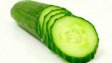 Photo of Wie viele Kalorien haben Gurken?