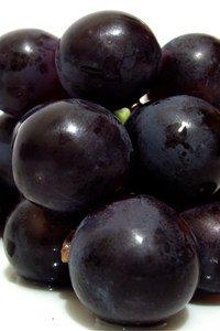 Trauben werden meistens zur Herstellung von Wein oder Saft verwendet