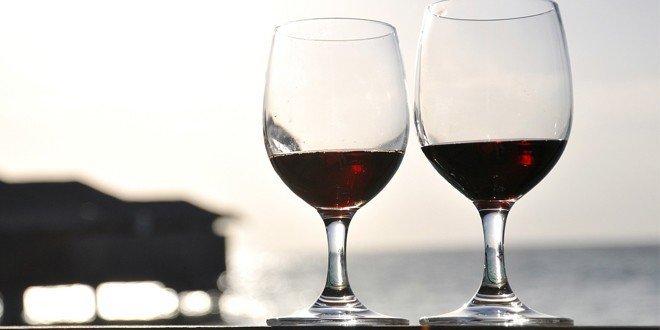 Was bedeutet ökologischer Weinbau für den Bio Wein?