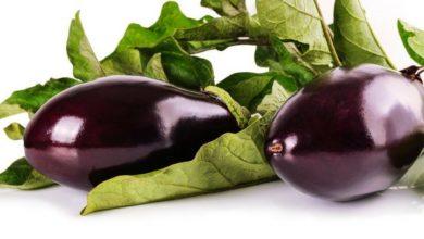 Photo of Aubergine – Kalorien und Nährwerte, roh, gekocht und gegrillt