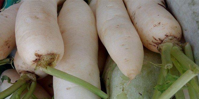 Radieschen sind ein sehr gesundes Gemüse.