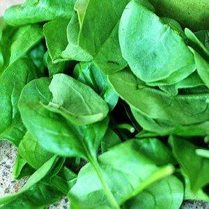 Was sie beim Spinat und Kalorien beachten müssen