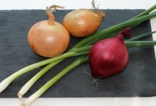 Gegen welche Beschwerden kann die Zwiebel helfen?