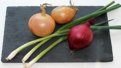 Photo of Zwiebel, Kalorien und Nährwerte der Speise-, Küchenzwiebel