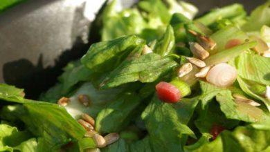 rhabarber salat ist lecker und gesund