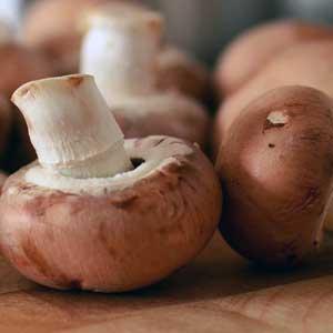 Champignons gelten als kalorienarm; in 100 g sind ca. 24 kcal enthalten.