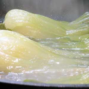 Beim Fenchel handelt es sich um eine zweijährige bis ausdauernde krautige Pflanze,.