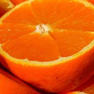 Danach werden die Vitamine in zwei Gruppen eingeteilt: in die Gruppe der fettlöslichen, speicherbaren Vitamine und die Gruppe der wasserlöslichen, nicht speicherbaren Vitamine.