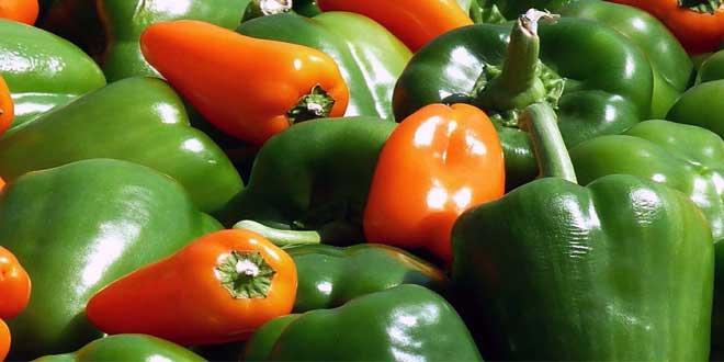 """Vitamin E wurde als """"Fruchtbarkeits-Vitamin"""" entdeckt."""