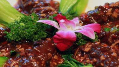 Photo of Tofu, so gesund ist der Vegetarische Fleischersatz