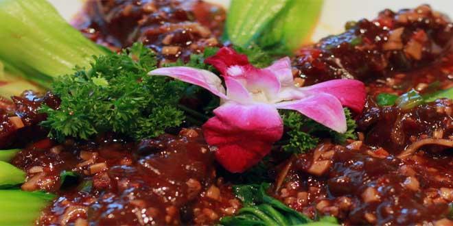 Tofu wird aus einem weißen Sojabohnenteig hergestellt, der bei der Denaturierung und Koagulation von Proteinen in der Sojamilch entsteht