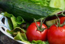 Photo of Salat und Gurken, ein knackfrisches Duo