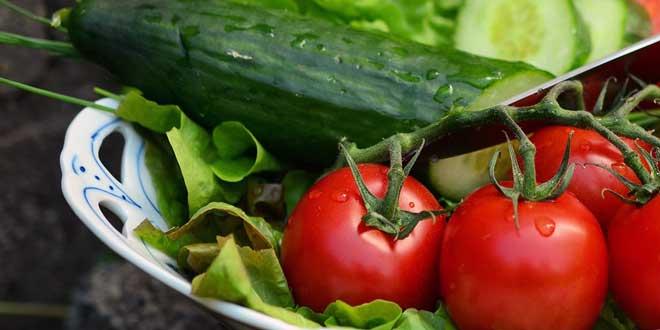 Es gibt viele verschiedene Arten von Salat Pflanzen.