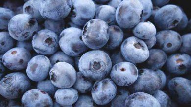 Photo of Heidelbeeren, Kalorien und Nährwerte der gesunden Beeren
