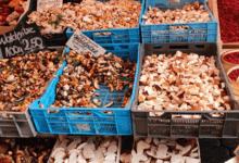 Carpaccio von knackigen Steinpilzen