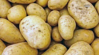 Photo of So können Sie die Kartoffel gesund Zubereiten