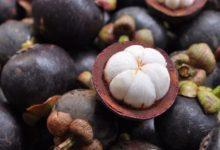 Photo of Mangostan – Kalorien und Nährwerte der Garcinia mangostana