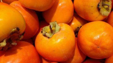 Die Kaki bietet im Winter Abwechslung zu anderen Früchten und ist sehr gesund.