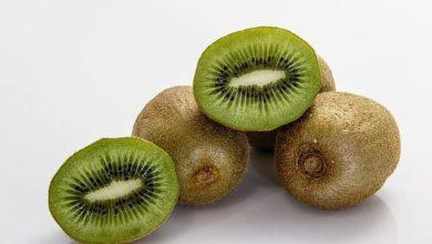 Photo of Kiwi Frucht – der Grüne Exot mit viel Vitamin C