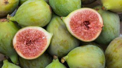 Photo of Feigen Kalorien und Nährwerte der gesunden Ficus carica