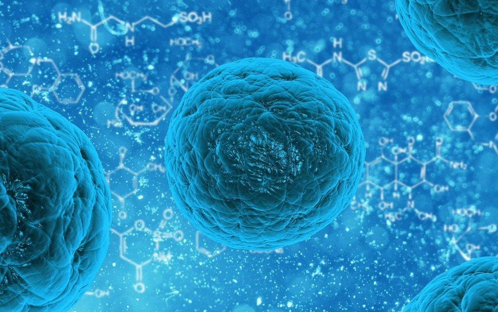 Krebs mit einfachen Mittel bekämpfen
