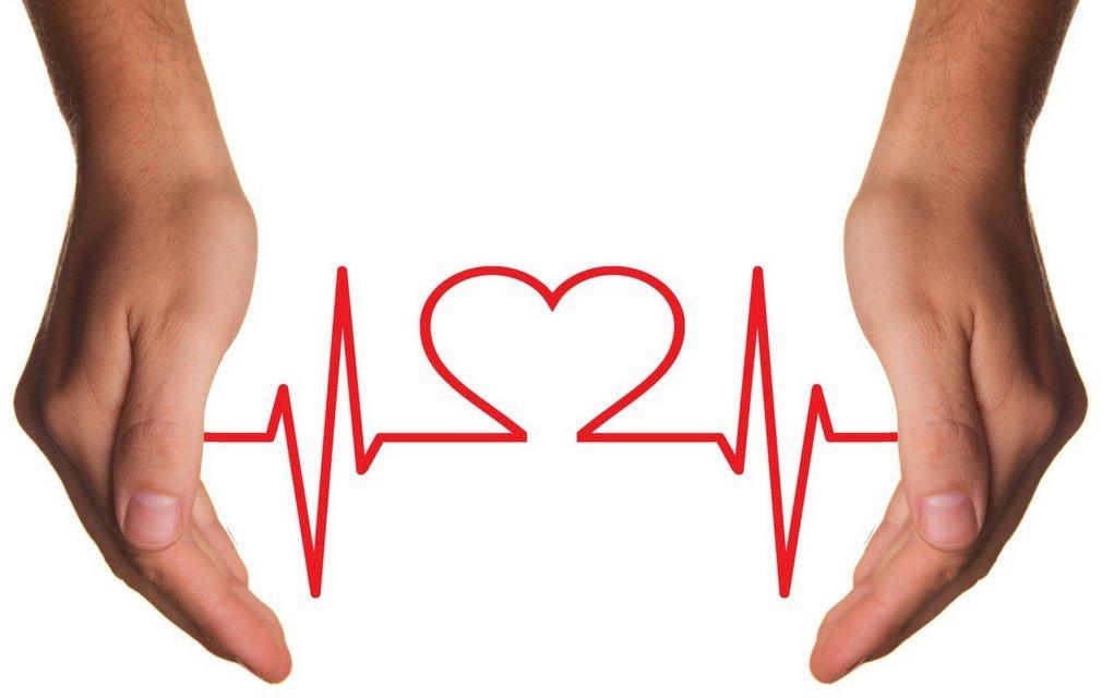 Trüffelöl unterstützt die Herzgesundheit