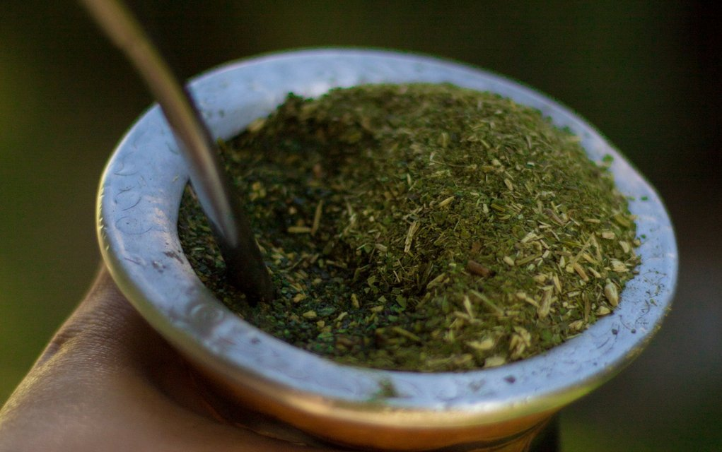 Yerba Mate Tee als Superfood