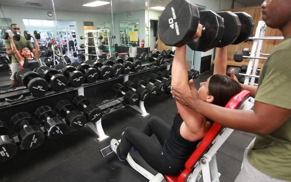 Mit dieser Ernährung den Muskelaufbau beschleunigen