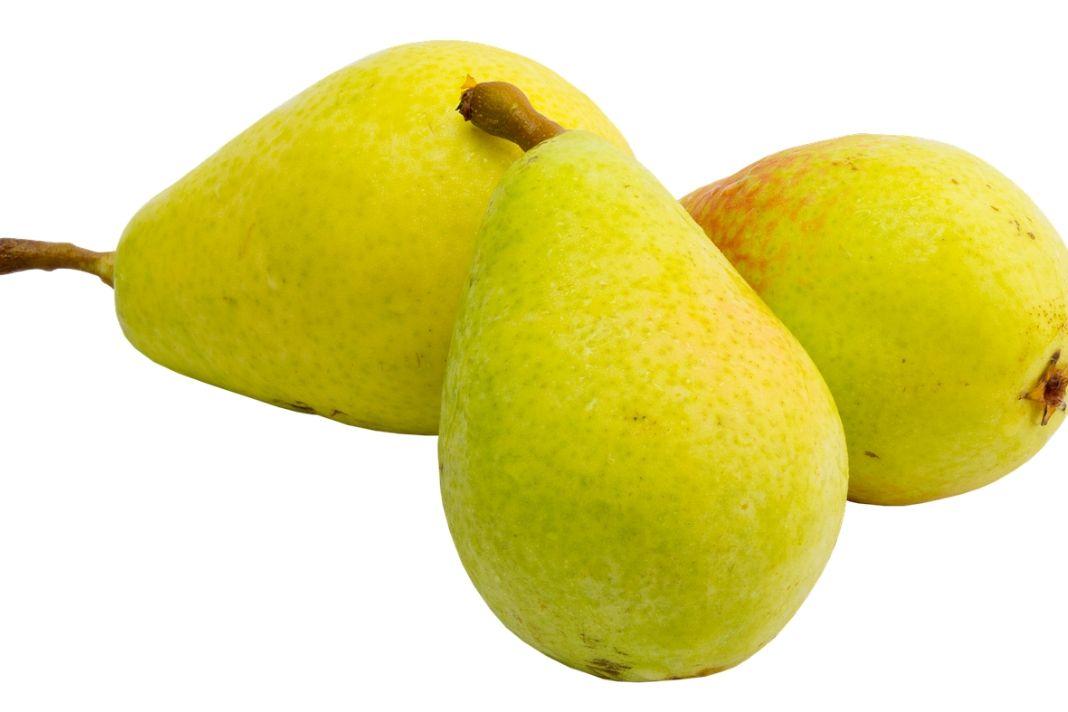 Birnen Kalorien und Nährwerte sowie ihre immun- und antioxidativen Vorteile